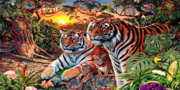 nuevo-reto-viral-cuantos-tigres-puedes-ver-en-la-imagen-2-2016