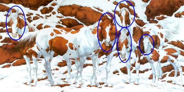 nuevo-reto-visual-cuantos-caballos-puedes-ver-en-la-imagen-foto-2-2016